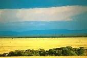 Est-il possible de faire un safari en routard ? Paysage de Tanzanie