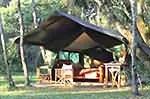 types hébergements en tanzanie. Tented Camp en brousse en Tanzanie