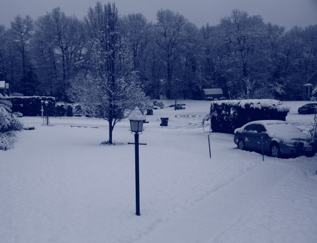 Winter wonderland again 0001