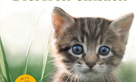 Tierkommunikation – Tierisch einfach von Amelia Kinkade