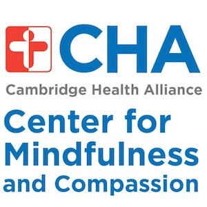 Transformative Tuesdays @ CMC @ Center for Mindfulness and Compassion