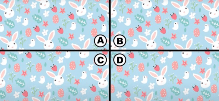 spot the bunny quiz answers 2021