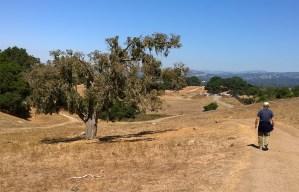 Hike on park trail.