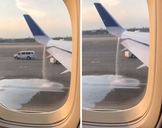 Newlyweds Save United Airlines Flight From Disaster, Get Terrible Thanks