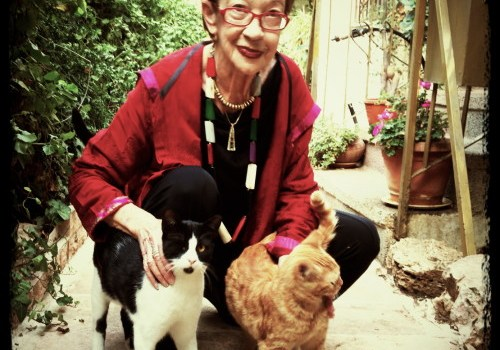 Interview with Raphaella Bilski, Author of My Street Cats