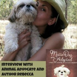 Author Interview with Rebecca Sanchez
