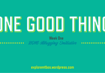 2016 MTBoS Blogging Initiative Week One - One Good Thing