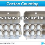 Carton Counting Fraction Constructs - McWilliam Professional Development