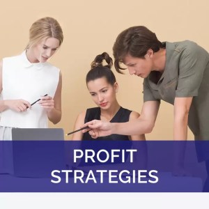 Profit Strategies for Business video series