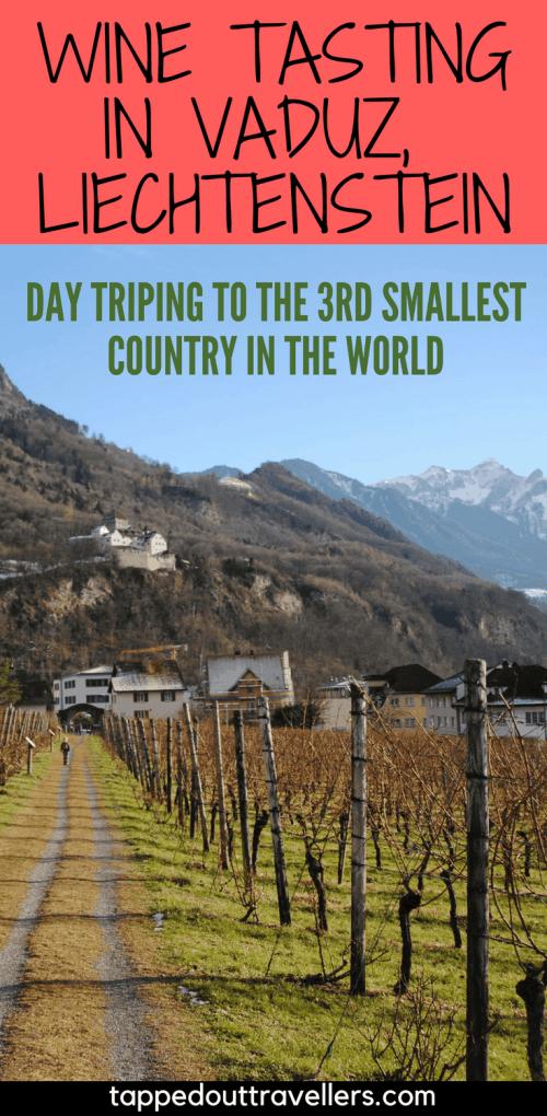 Day trip to Vaduz, Leichtenstein for wine tasting. | Switzerland with kids | Switzerland for Christmas | Switzerland in winter | Family Travel | Travel with kids