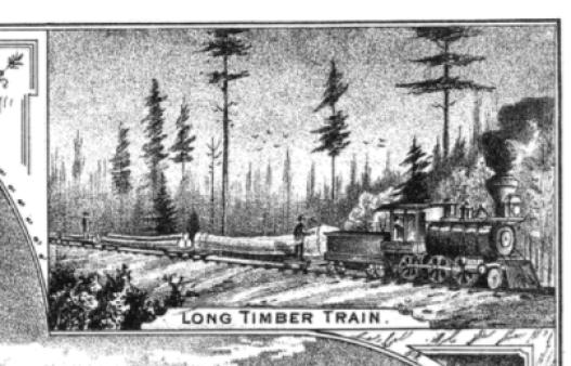 History of Lake Huron Shore - Logging Train