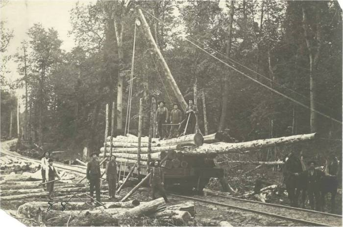 log jammer to load logs onto rail cars