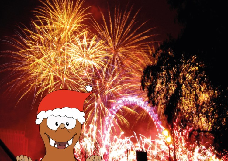 Fireworks in London_Tapsy Tours for families with kids