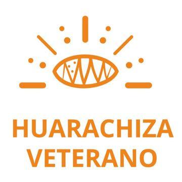 botón Huarachiza Veterano