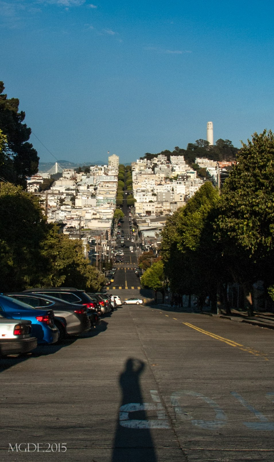 View of the Coit Tower from the straight section of Lombard Street