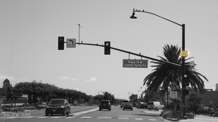 U.S. Route 101. The longest highway in the state and one of the original national routes established in 1926 that is still active.