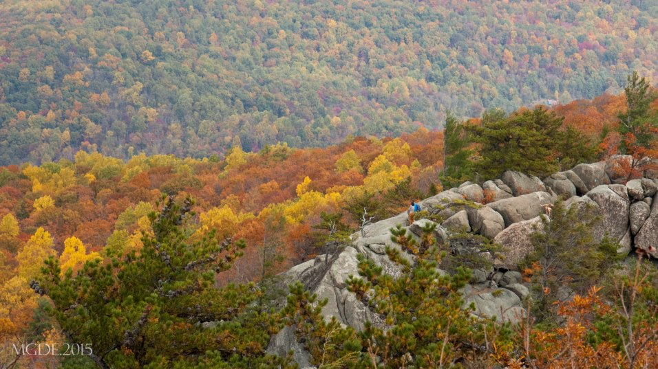 View of Rock scramble from the summit of Old Rag