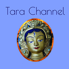 Welcome to the Tara Channel - www.tarachannel.com