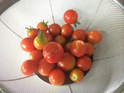 長雨で実割れしたトマトの活用法レシピ