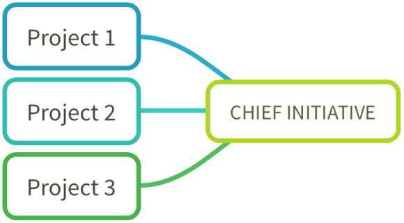 Declare Your Chief Initiative