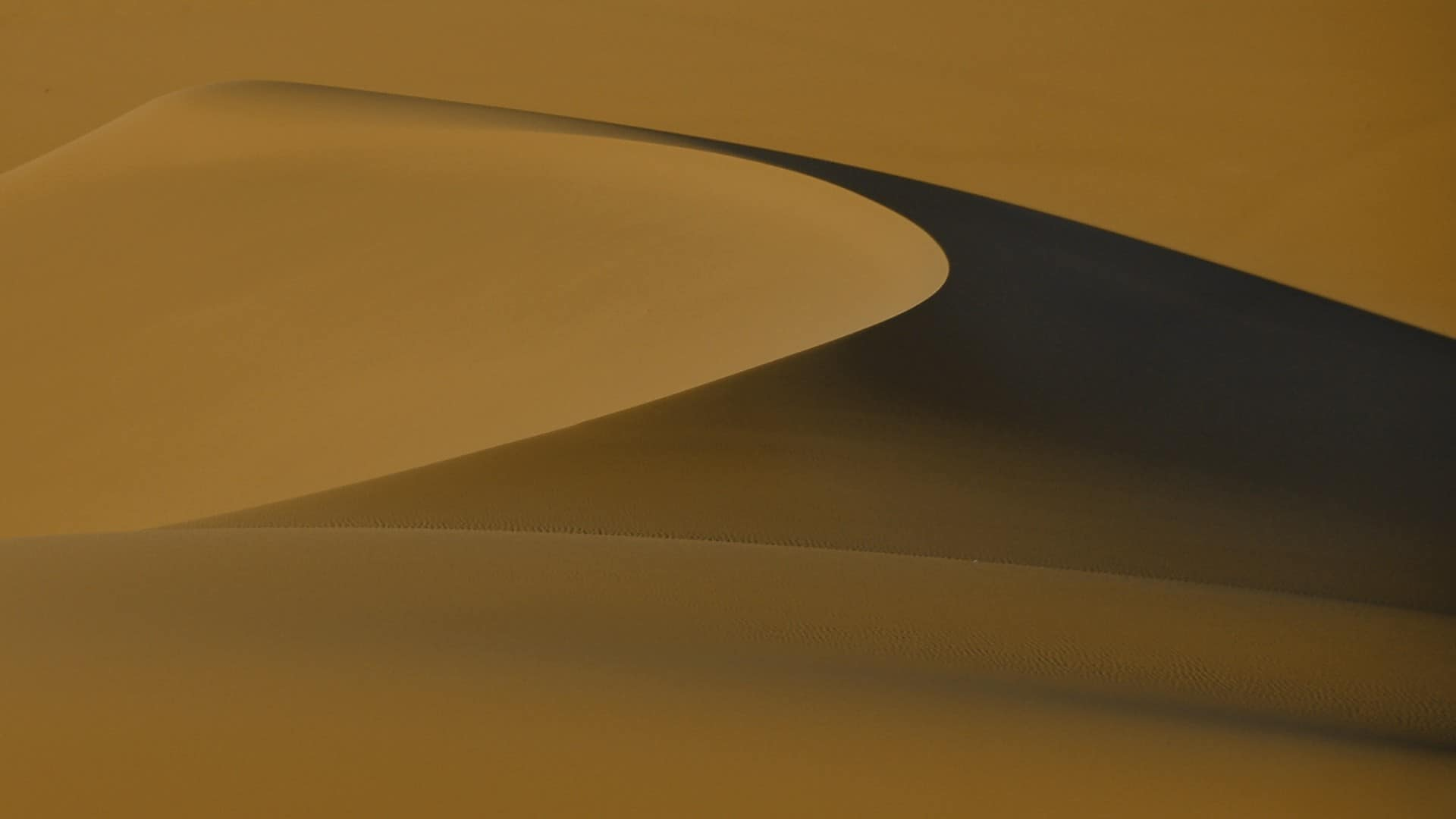 Dubai: Sand Dunes