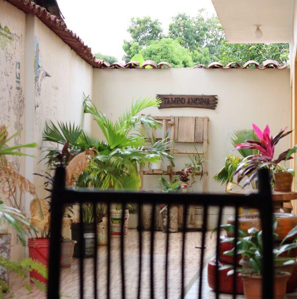 Tambo Andina Tarapoto hostel