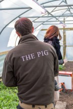 The Pig at Combe