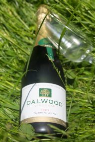 An Afternoon at Dalwood Vineyard