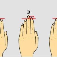 【指の長さ】アメリカで話題になってる性格診断