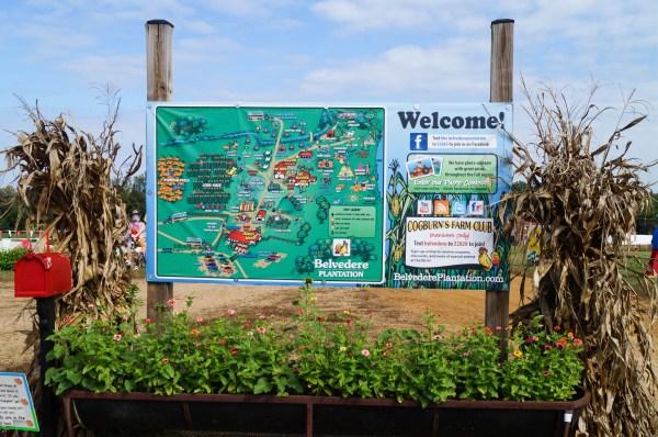 Belvedere Plantation (14 of 40)