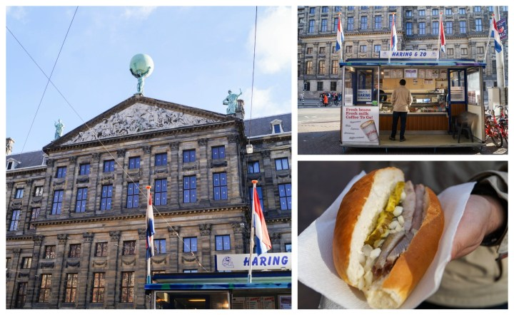 Raw herring stall behind the Royal Palace- sandwich with raw herring, onions, and pickles
