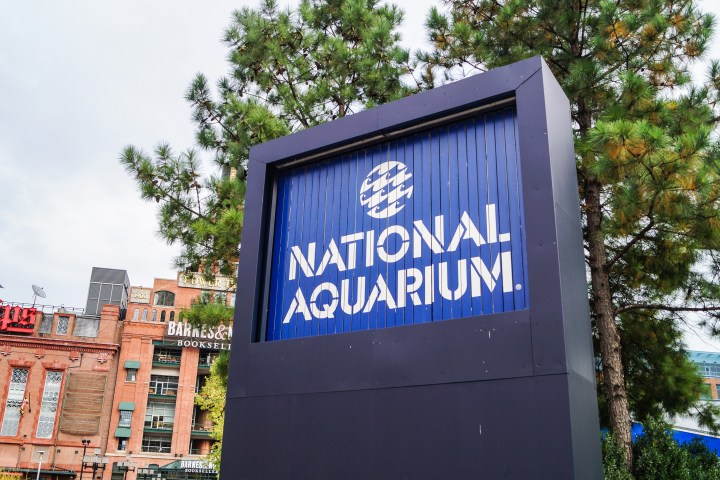 Blue National Aquarium with white letters.