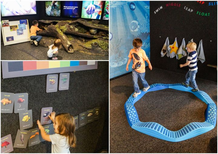 Playing in the Children's Discovery Gallery at the National Aquarium.