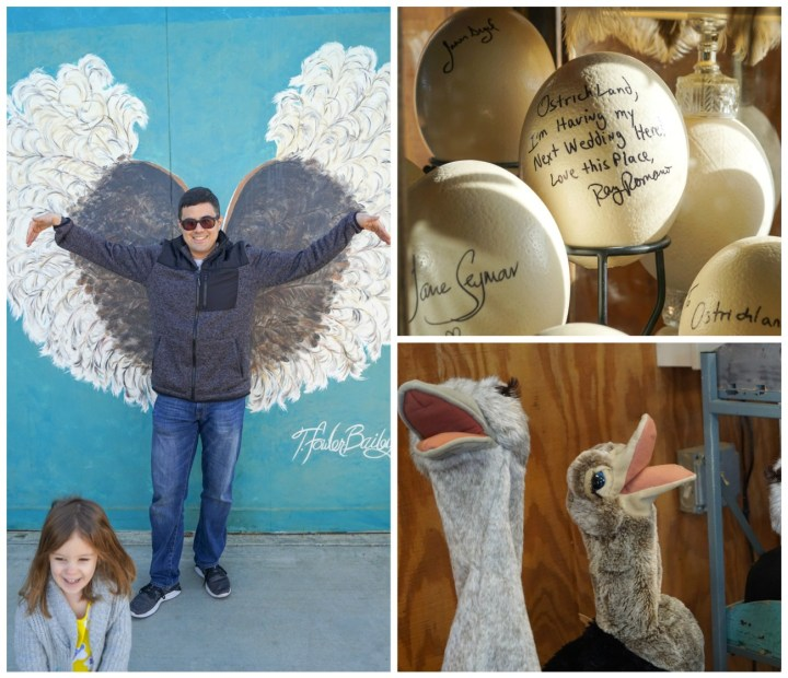 Standing in front of painted mural of ostrich wings at Ostrichland USA, signed ostrich egg by Ray Romano stating- Ostrichland, I'm having my next wedding here. Love this Place, Ray Romano. Ostrich puppets
