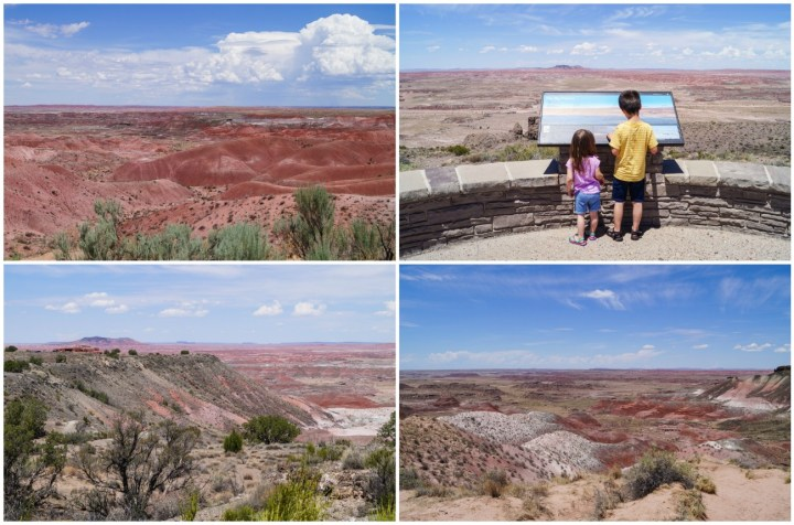 Reddish brown hills at Petrified Forest National Park with sparse vegetation