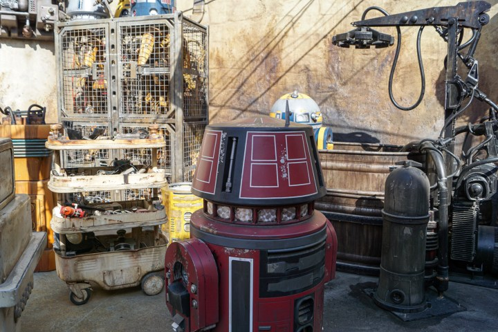 Red droid at Galaxy's Edge