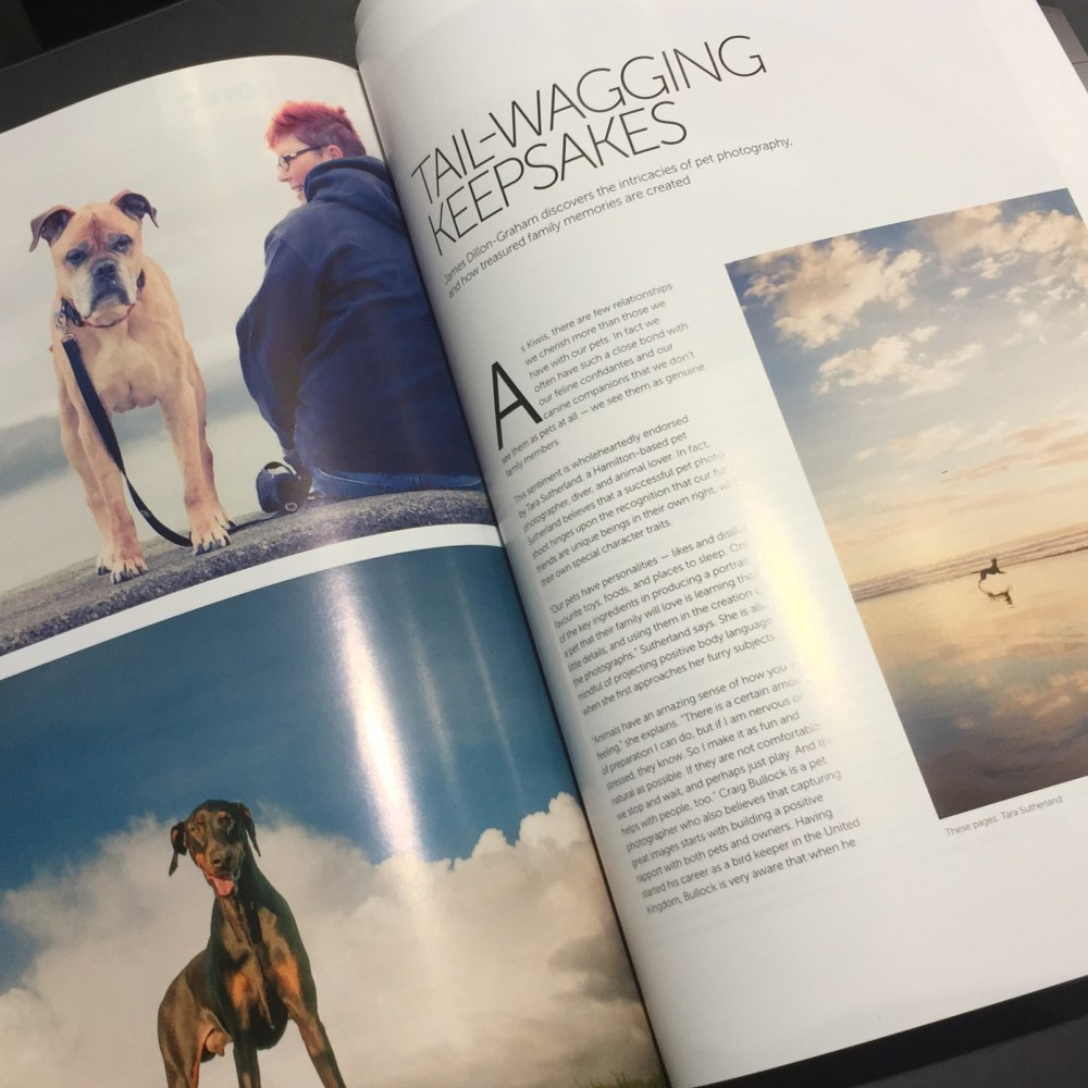 DPhoto Magazine - Feature on Pet Photography