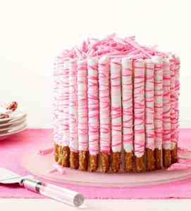 Mile high crunchy pretzels, covered in sweet chocolate, make this gasp-worthy Pink Pretzel Party Cake the star of your festivities.