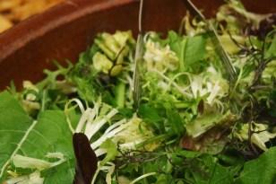 Garden Salad & Vinaigrette