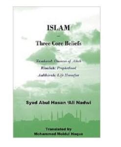 Islam - Three Core Beliefs: Tawheed (Oneness of Allah) Risalah (Prohethood) Aakhirah (Life Hereafter)