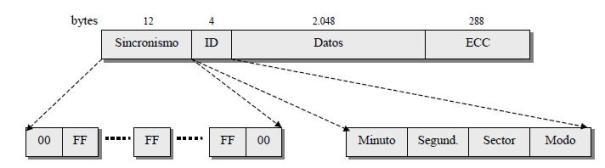 Codificación de la información