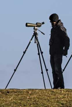 Spotting Scope on Full-Size Tripod