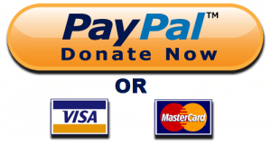 Donate Now Button Visa MC and Paypal