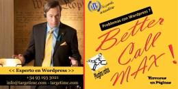 Experto en WordPress – Better Call Max !!!