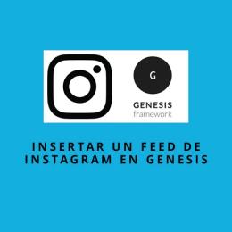 Cómo añadir un feed de Instagram en Genesis