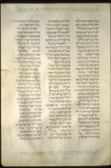 tglam19b-16a