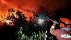 Çin'de Çıkan Orman Yangınında 19 Kişi Öldü