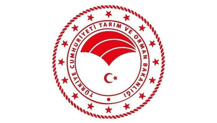 OGM 390 Kamu Personeli Alımı Başvuruları İŞKUR'da Başladı