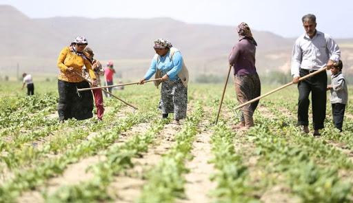 Tarım işçilerine 'izin' şartı geldi