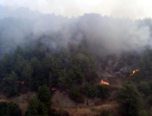 Antakya'daki Orman Yangını Söndürülmeye Çalışılıyor